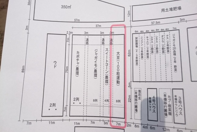makkari_daizu015